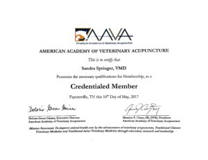 As a credneitlaed AAVA veterinary acupuncturist, Dr. Truli must keep up with current education in holistic medicine.